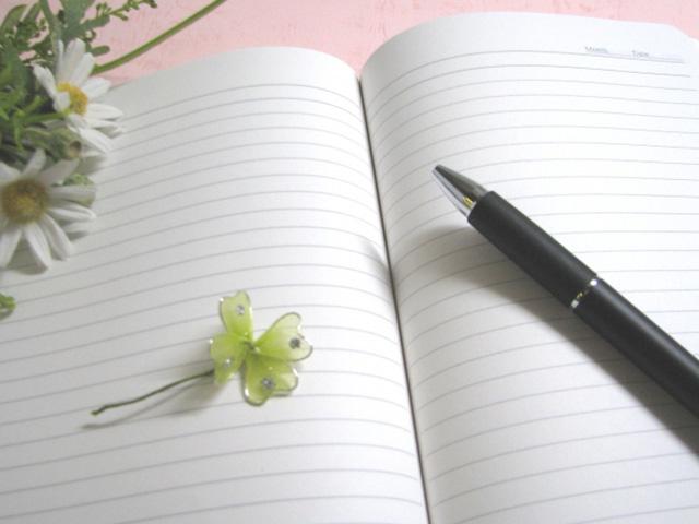 理由06 言いたいことが素直に言える交換日記